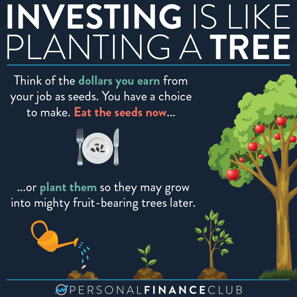 Investing is like planting a tree